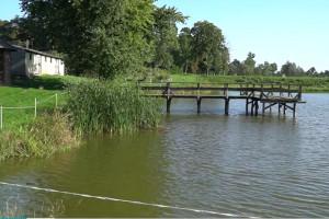Czy Lokalne Partnerstwa ds. Wody poradzą sobie z problemem suszy w rolnictwie?