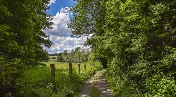 KOWR zamieni nieruchomość rolną na nierolną