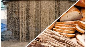 Młynarze alarmują: Brakuje pszenicy i żyta, za chwilę będą puste półki w sklepach