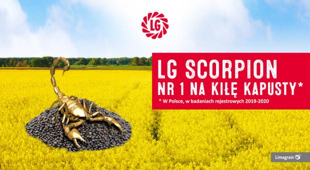 fot. LG Skorpion/Limagrain