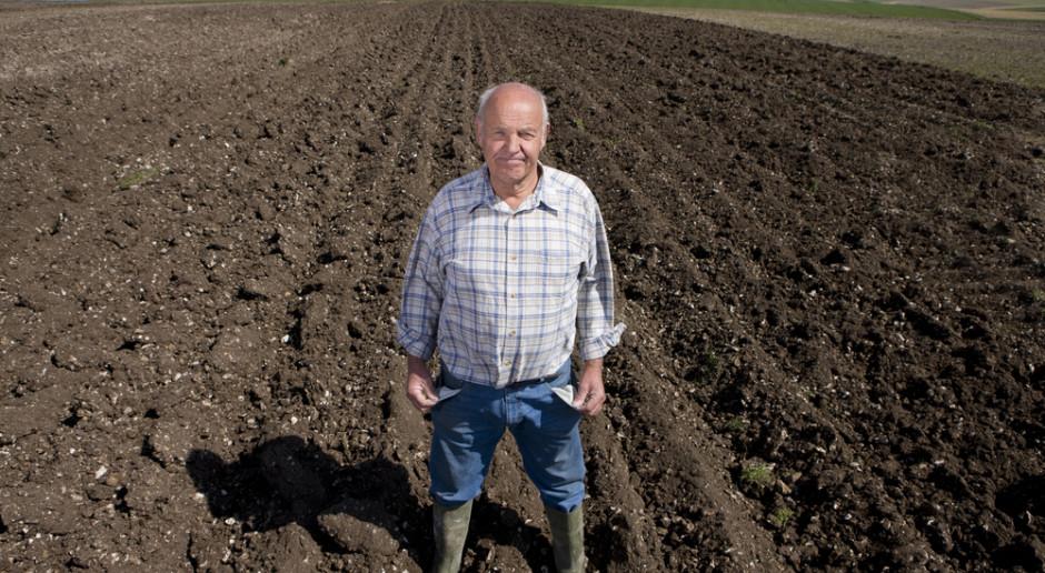 Nierówna walka rolników z zagranicznymi skupami i sieciami handlowymi