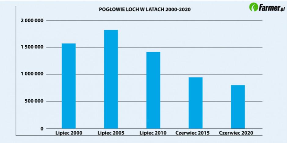 Zmiany pogłowia loch w latach 2000-2020 (Źródło: GUS)