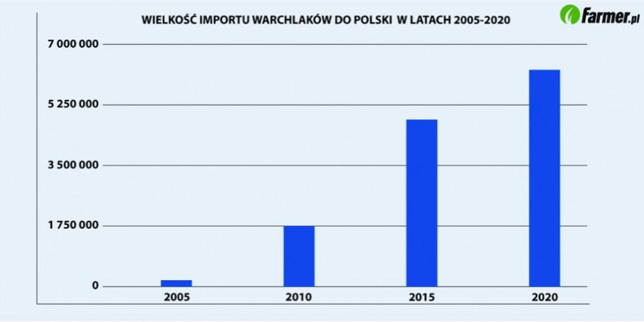 Zmiany wielkości importu prosiąt w latach 2005-2020 (Źródło: Eurostat)