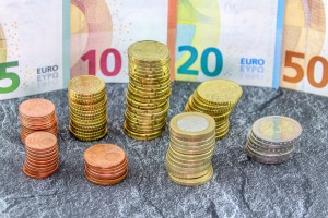 10 proc. z puli dopłat dla połowy polskich rolników