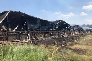 Drewniany kurnik spłonął doszczętnie, Foto: OSP Bytom Odrzański