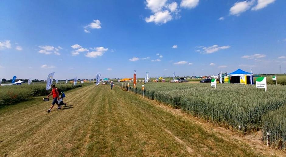 Rozpoczęły się Krajowe Dni Pola i Agrotech w Minikowie. Co można zobaczyć?