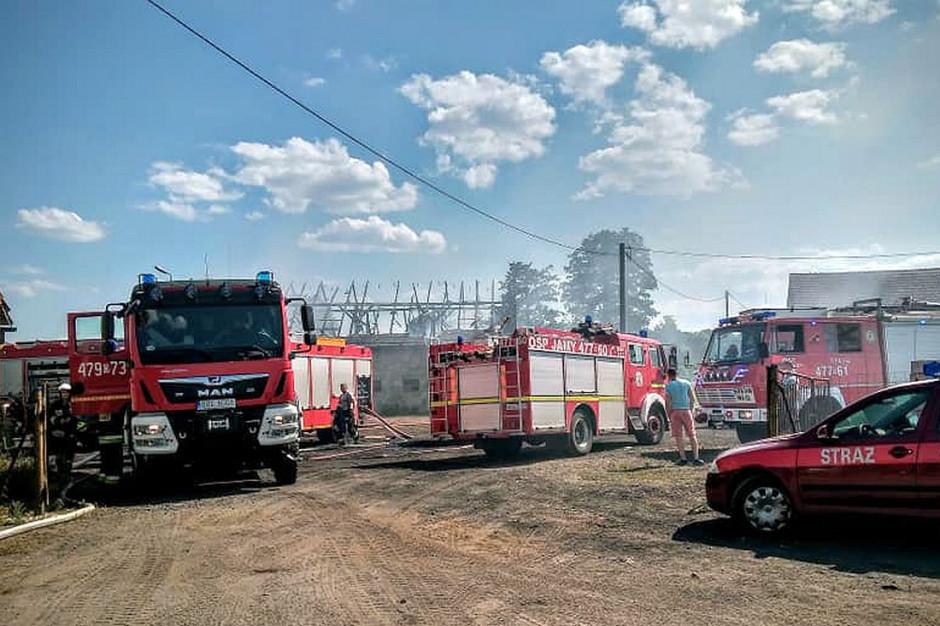 Do akcji gaśniczej ruszyło aż 11 wozów straży pożarnej, Foto: OSP Praszka