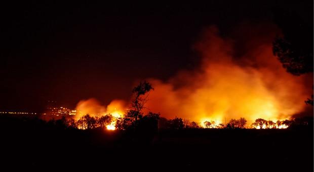 Straż pożarna: Ogniomur może pomóc w uniknięciu wielkich pożarów