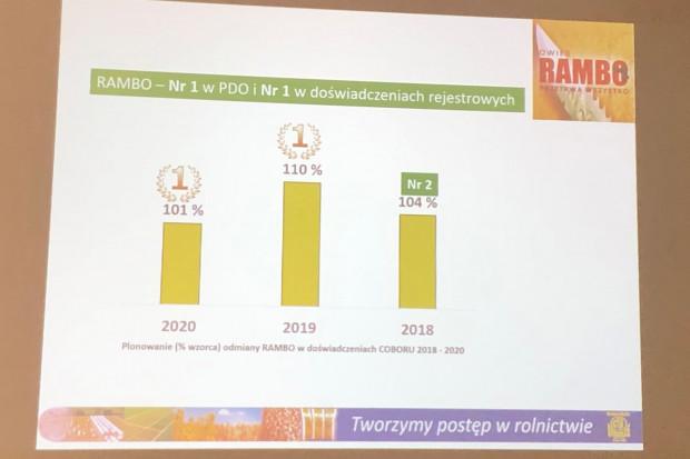 W badaniach latach 2018-2020 Rambo plonował na poziomie 101-110 proc. wzorca (JŚ-S).