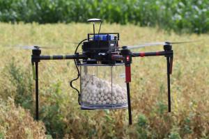Jak chronić rośliny z wykorzystaniem dronów?