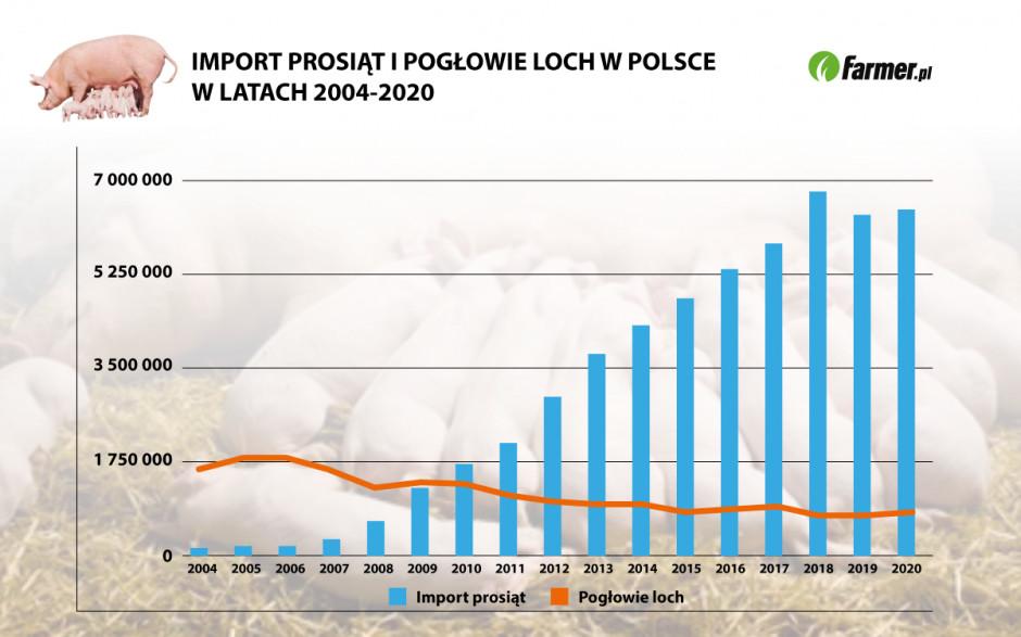 Źródło: Eurostat, GUS Grafika: PTWP