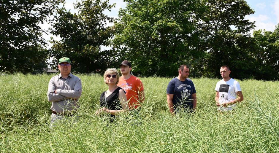 Podczas spotkania rolnicy mieli okazję porównać wpływ różnych technologii uprawy gleby na rozwój roślin rzepaku ozimego, fot. HJ