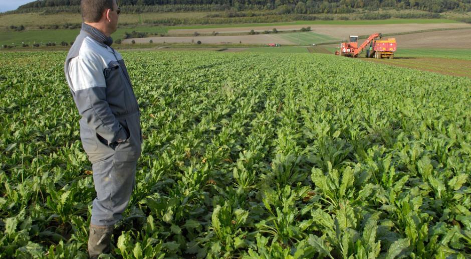 20 000 euro odszkodowania dla rolnika za opóźnione dopłaty