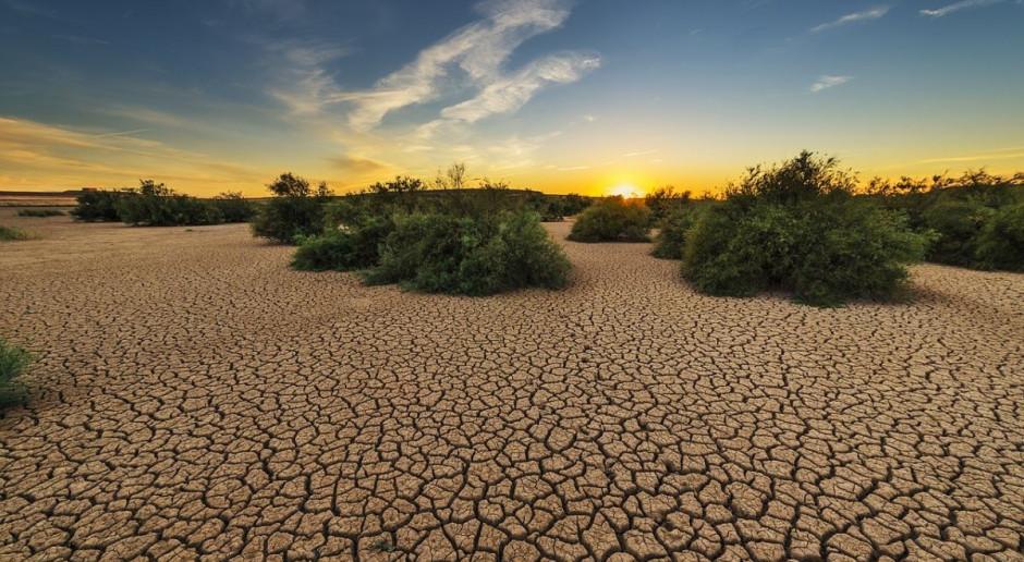 Meksyk: Susza pogłębia problem zaopatrzenia w wodę i zagraża uprawom
