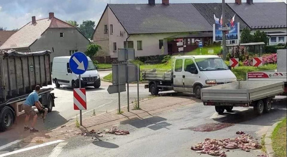 Odpady poubojowe na drodze – rolnicy alarmują policję i krytykują służby