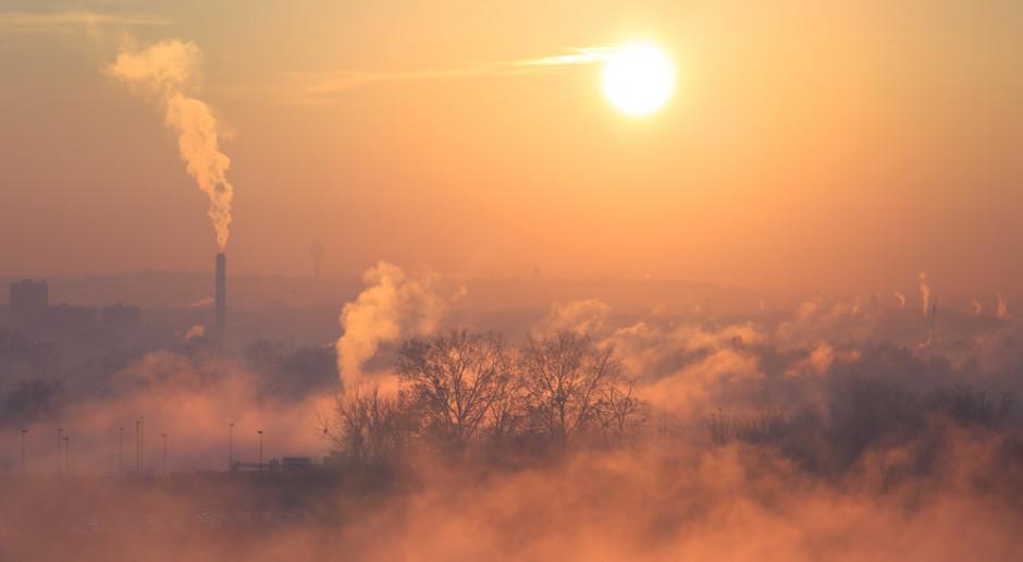 Zanieczyszczenia powietrza mogą zaburzać rozwój płodu i wzrost dzieci