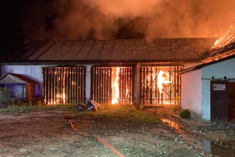 Ogień szalał m.in. we wnętrzu stodoły z sianem i słomą, Foto: KP PSP Kartuzy