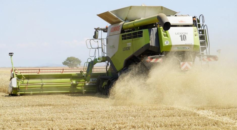Rekordzista skosił 66 ha pszenicy
