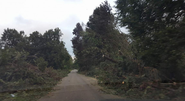 Ponad 5,3 tys. interwencji po burzach; uszkodzone ponad 200 dachów; ranne dzieci