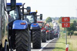 Rolnicy podczas protestu: ASF wyniszczył hodowlę świń w kraju