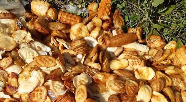 Kilogramy oscypków wyrzucone w lesie w Bieszczadach