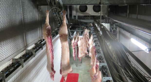 Chiński rynek wieprzowiny: Nowe przepisy ubojowe mają uporządkować branżę
