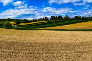 W nowej WPR od 10 ha gruntów ornych wymagane będą 3 uprawy