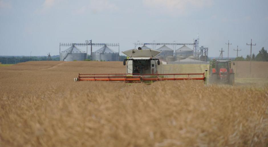 """570 ha rzepaku już zebrane. """"Małe żniwa"""" na dużą skalę w Agro-Farm"""