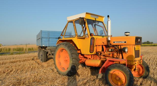 Arad na zkończenie: preferencje maszynowe, ceny ziemii i słonecznik