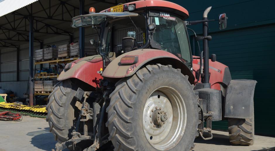 Maszyny Case IH cieszą się dobrą opinią wśród rumuńskich rolników, fot. Art Tłustochowicz