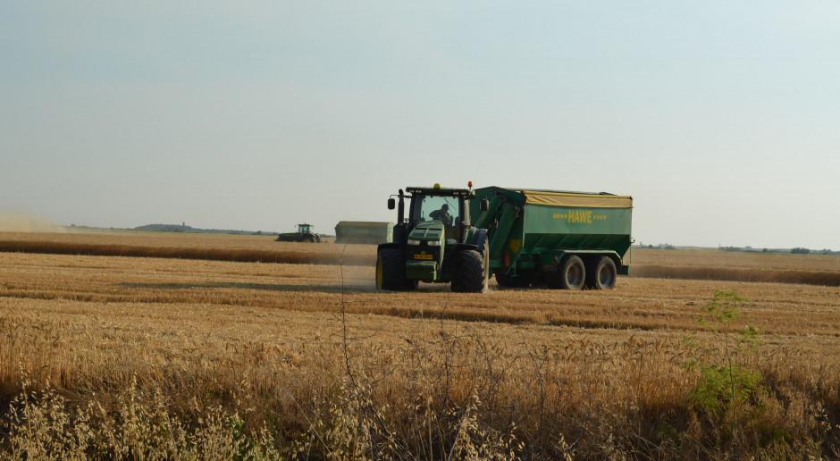Na polach farmy Arsat Agricultura, fot. Art Tłustochowicz