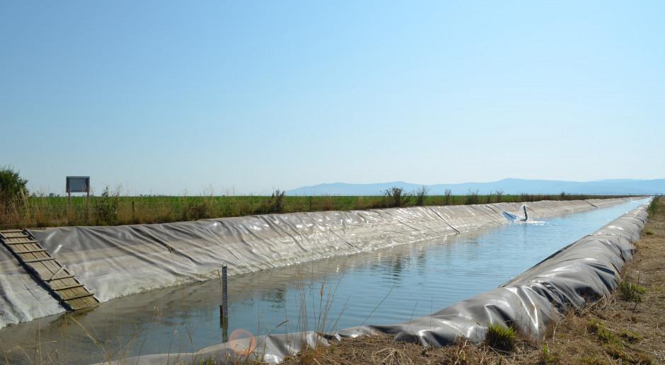 Kanał wodny o długości około 1 km zbudowany przez gospodarstwo Terracult wykorzystywany do nawadniania jego pól, fot. Art Tłustochowicz