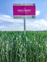 Argument to odmiana przydatna do uprawy wmonokulturach zbożowych