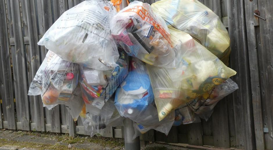 Bakterie w żołądku bydlęcym nadają się do rozkładania plastiku