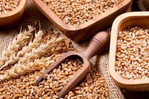 Spadek cen większości zbóż na światowych giełdach