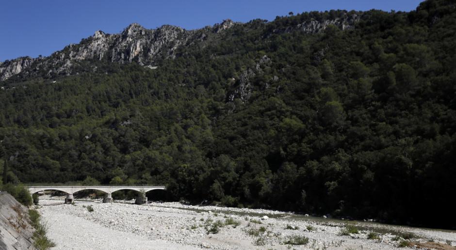 Susza we Francji: rolnicy z obawą patrzą na plony
