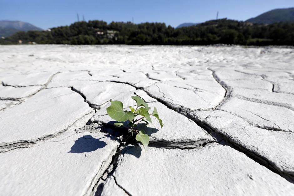 fot. PAP/EPA/SEBASTIEN NOGIER
