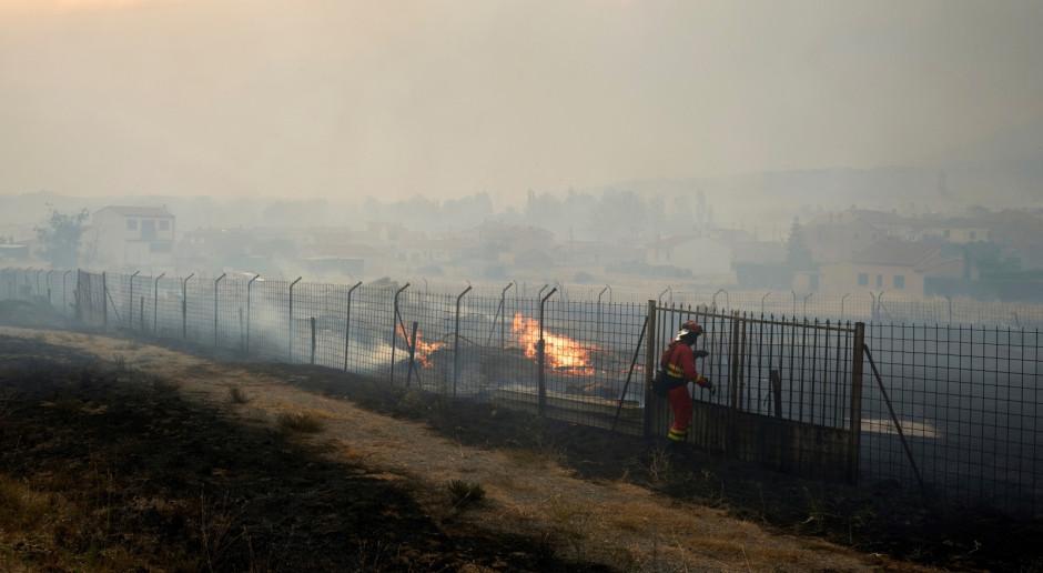 Hiszpania: 30 pożarów lasów, 200 ha spłonęło wskutek niedopałka