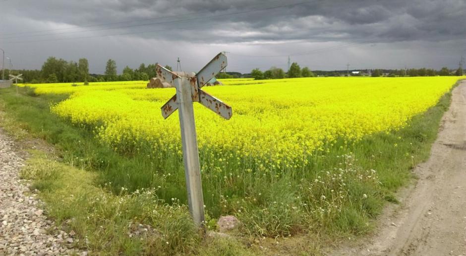 Ponad 74 tysiące hektarów na powiększanie gospodarstw rodzinnych