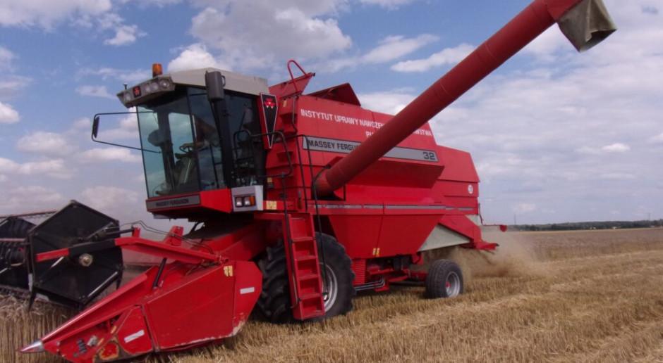 Stan upraw, plony rzepaku i zbóż, przebieg żniw w RZD IUNG-PIB