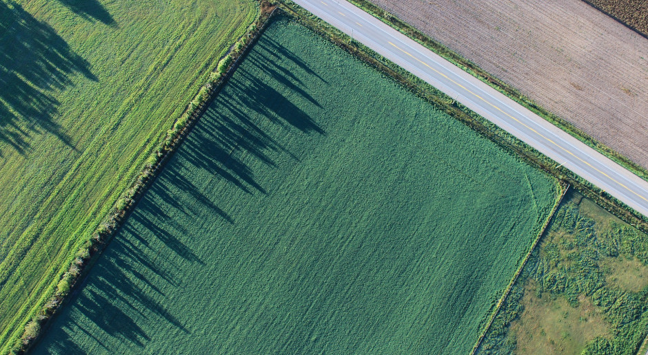 Jak sprawdzić, czy nieruchomość jest rolna?