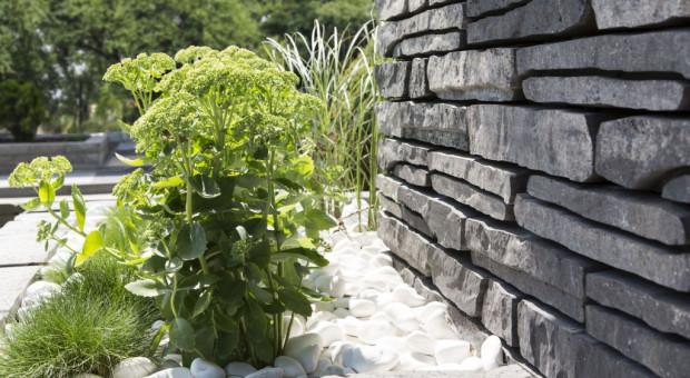 """Jak uniknąć """"betonozy"""" w aranżowaniu przestrzeni wokół domu?"""