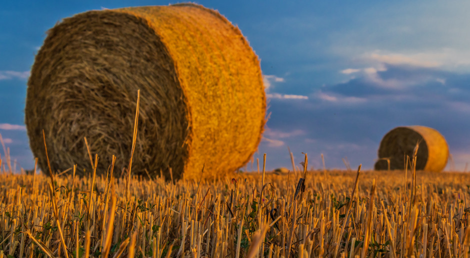 Polskie rolnictwo zmienia się intensywnie