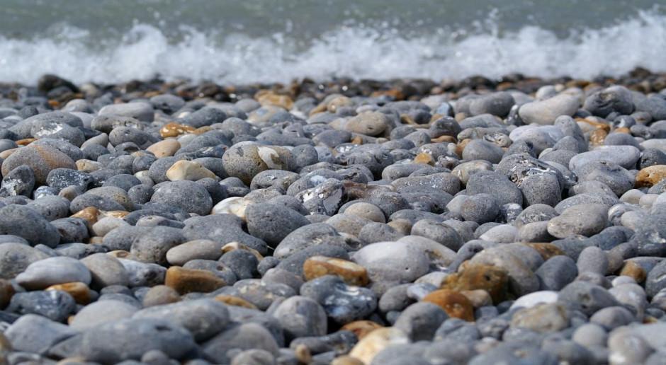 Hiszpania: Tony martwych ryb u południowo-wschodniego wybrzeża kraju