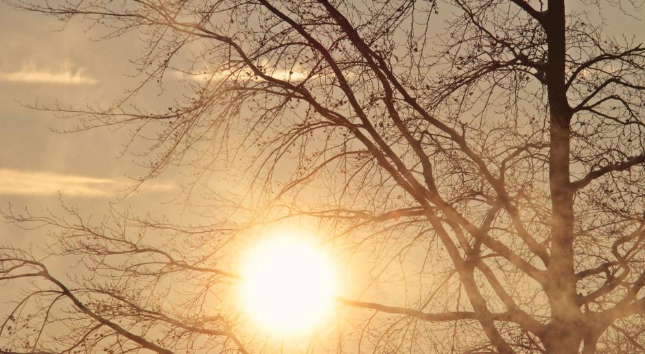 Synoptyk IMGW: Jutro zdecydowanie bardziej słonecznie