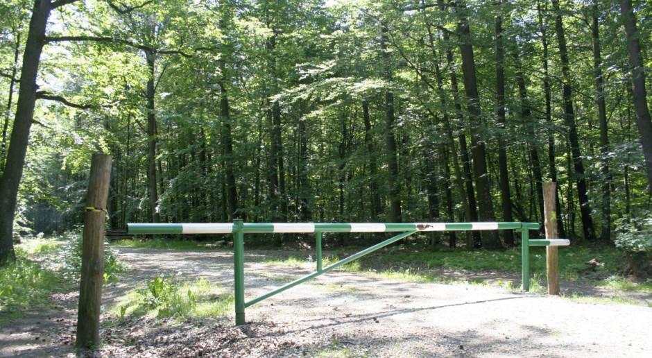 Prezydent podpisał specustawę o pozyskaniu gruntów leśnych pod inwestycje