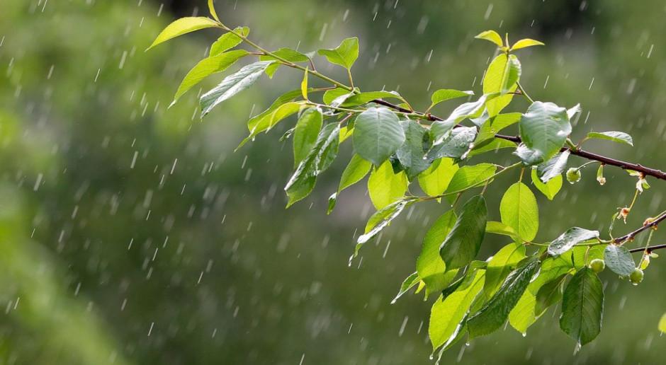IMGW: wieczór i noc będą pochmurne; mogą pojawić się przelotne opady deszczu i burze