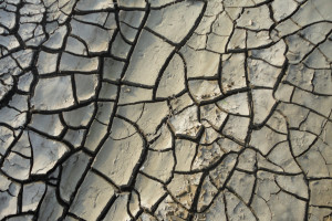 Czy pług przemieści wodę do wierzchniej warstwy gleby?