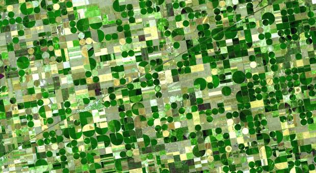Ile i czego jest na polach? Teledetekcja satelitarna prawdę powie?