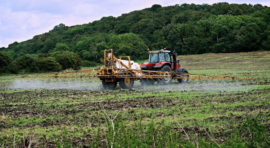 Naukowcy odkryli, że jedną z przyczyn otyłości może być popularny pestycyd